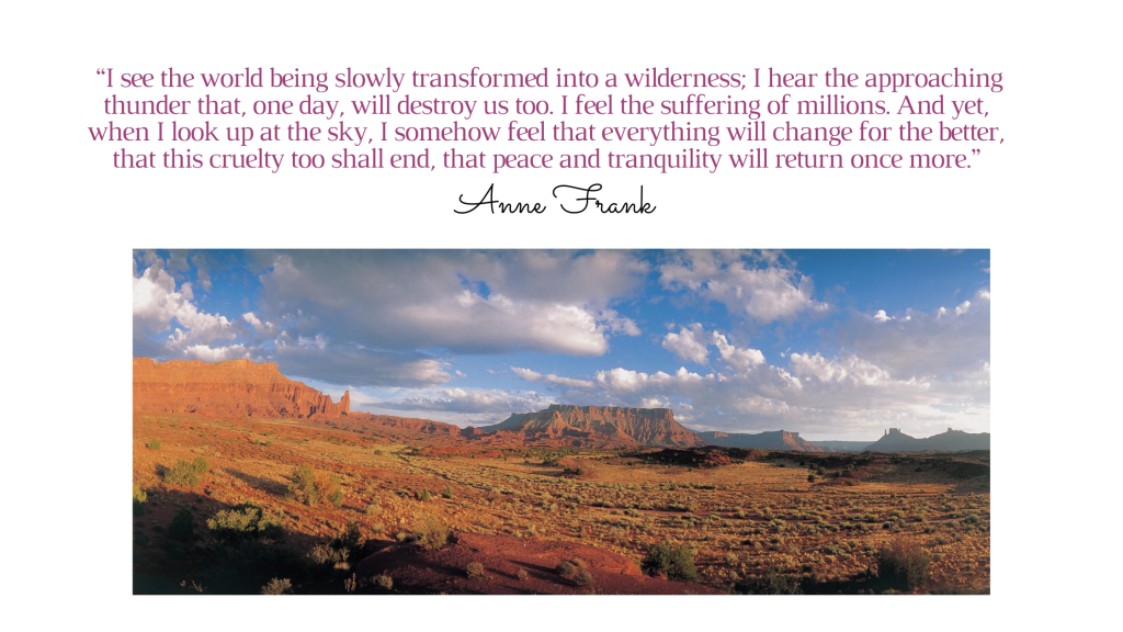 Anne Frank quote on wilderness and optimism, despite what she experiences.