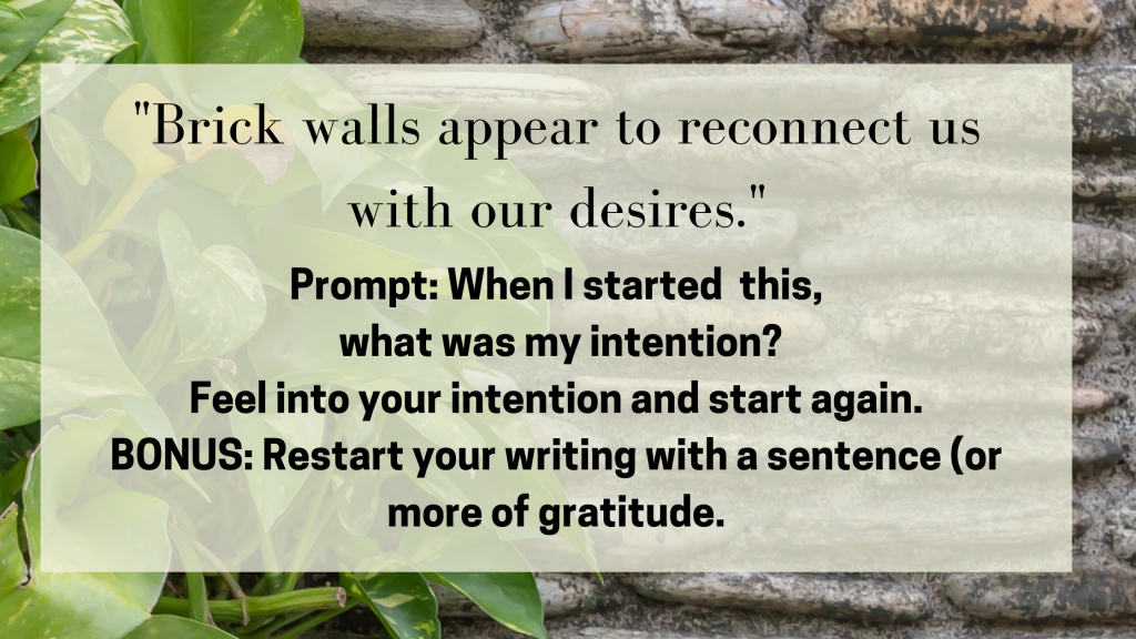 "A brick wall with plants on the side including a quote from Julie Jordan Scott ""Blocks appear in order to reconnect us with our desires."" and the prompt: ""When I started this, what was my intention?"" BONUS: Restart your writing with a sentence (or more) of gratitude."