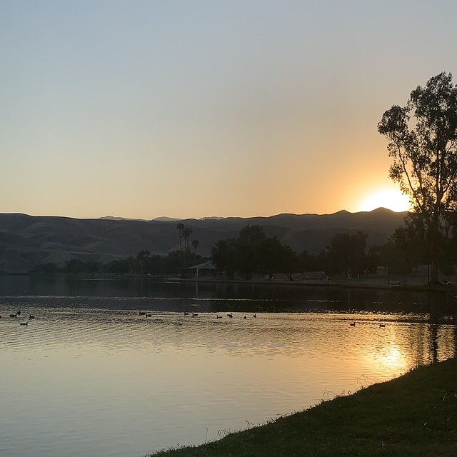 Just as the sunrises at Lake Ming in Bakersfield. Ducks in the lake swim as the sky brightens.
